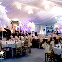 Wedding article fuchsia decoration wedding decoration event tips for wedding reception decor junglespirit Choice Image